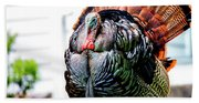Male Turkey Beach Towel
