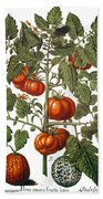 Tomato & Watermelon 1613 Beach Towel