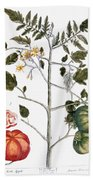 Tomato Plant, 1735 Beach Towel