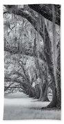 Tomotley Plantation Oaks Beach Towel