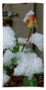Too Soon Winter - Yellow Rose Beach Towel