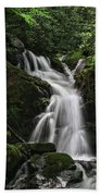 Top Of Mouse Creek Falls  Beach Towel