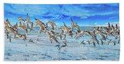 Topsail Skimmers Beach Towel