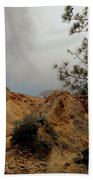 Torrey Pines-2 Beach Towel