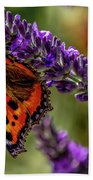 Tortoiseshell Butterfly On Lavender Beach Towel
