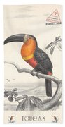 Toucan Bird Responsible Travel Art Beach Sheet