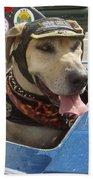 Tourist Dog 2 Square Beach Towel by Karen Zuk Rosenblatt
