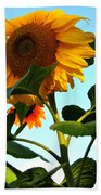 Towering Sunflower Beach Towel
