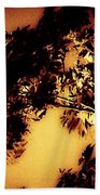 Towering Trees In The Twilight Beach Towel