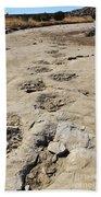 Tracks In The Desert 6 Beach Towel