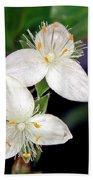 Tradescantia Flower Beach Sheet