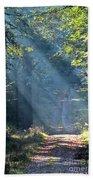 Trail In Morning Light Beach Towel