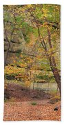 Trail In Tonty Canyon Beach Towel