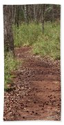 Trail To Beauty Beach Towel
