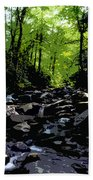 Trail To Chimney Top Beach Towel