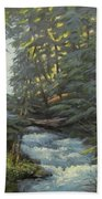 Trail To The Falls Beach Towel