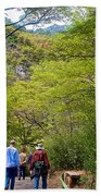 Trail To Waterfall In Vicente Perez Rosales National Park Near Puerto Montt-chile Beach Towel
