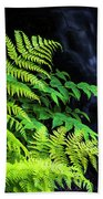 Trailside Plants Beach Towel