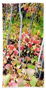 Tranquil Days Of Autumn Beach Towel