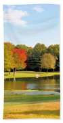 Tranquil Landscape At A Lake 7 Beach Towel