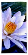 Tranquil Lily Beach Towel