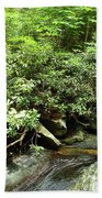 Tranquil Mountain Laurel Stream In The Great Smoky Mountains National Park Beach Towel