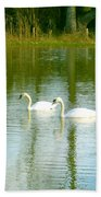 Tranquil Reflection Swans Beach Towel