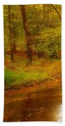 Tranquility Stream - Allaire State Park Beach Towel