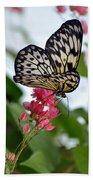 Translucent Butterfly Beach Towel
