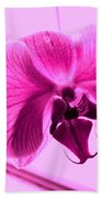 Translucent Purple Petals Beach Towel