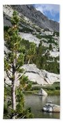 Treasure Lake Pine Beach Towel