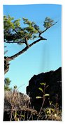 Tree And Rock Beach Towel