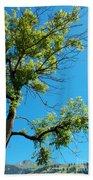 Tree Art 1 Beach Sheet