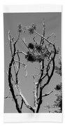 Tree Art Black And White 031015 Beach Sheet