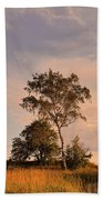 Tree At Dusk On Suomenlinna Island Beach Towel