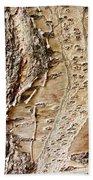 Tree Bark 9 Beach Towel