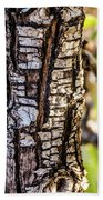 Tree Bark Beach Towel