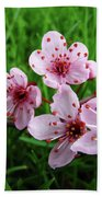 Tree Blossoms 4 Spring Flowers Art Prints Giclee Flower Blossoms Beach Towel
