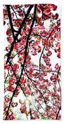 Tree Blossoms Beach Towel