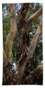 Tree Branch Texture 1 Beach Towel