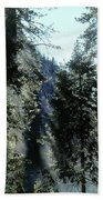 Tree Breath Beach Towel