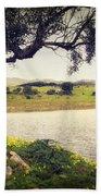 Tree By The Lake Beach Sheet