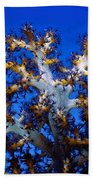 Tree Coral Beach Towel