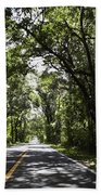 Tree Covered Road Beach Towel