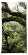 Tree Drama Beach Towel