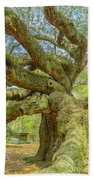 Tree For The Ages Beach Towel