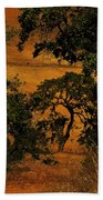 Tree Formation Beach Towel