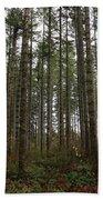 Tree Hugger's Paradise Beach Towel