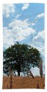 Tree In The Field Beach Towel