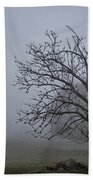 Tree In The Fog Beach Towel